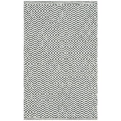 Shevchenko Place Hand-Woven Ivory/Gray Area Rug Rug Size: Rectangle 8 x 10