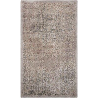 Simms Gray Area Rug Rug Size: 23 x 39