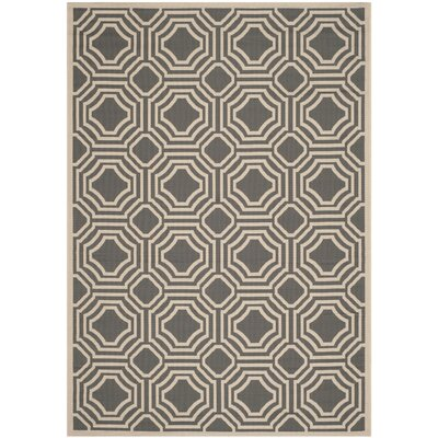 Schaper Indoor/Outdoor Rug Rug Size: Rectangle 4 x 57