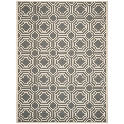 Schaper Indoor/Outdoor Rug Rug Size: 8 x 11