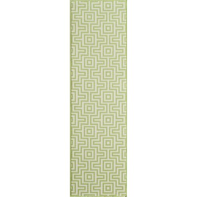 Wexler Hand-Woven Green Indoor/Outdoor Area Rug Rug Size: Runner 23 x 76