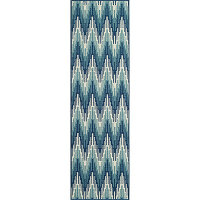 Wexler Hand-Woven Blue Indoor/Outdoor Area Rug Rug Size: Runner 23 x 76