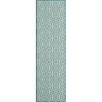 Rahul Hand-Woven Blue Indoor/Outdoor Area Rug V Rug Size: Runner 23 x 76