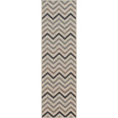 Wexler Hand-Woven Sage Area Rug Rug Size: Runner 23 x 76