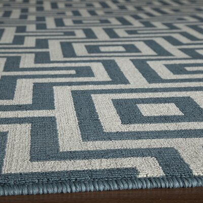 Wexler Hand-Woven Blue Indoor/Outdoor Area Rug V Rug Size: 23 x 46