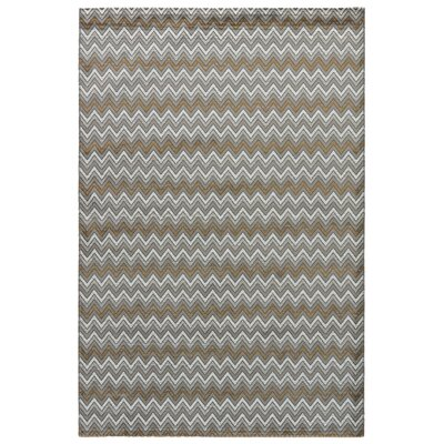 Langridge Gray Area Rug Rug Size: 76 x 96