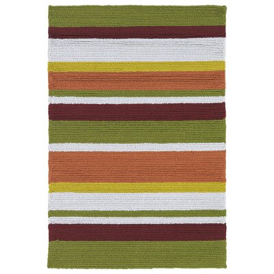 Staple Hill Tangerine Indoor/Outdoor Area Rug I Rug Size: Rectangle 2 x 3