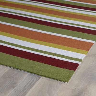 Staple Hill Tangerine Indoor/Outdoor Area Rug I Rug Size: Runner 2 x 6