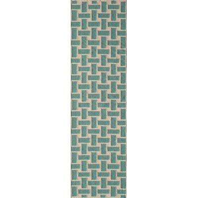 Hagler Hand-Woven Aqua Area Rug Rug Size: Runner 23 x 8