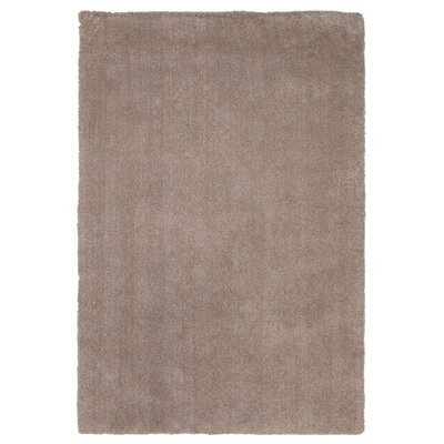 Bouvier Beige Area Rug Rug Size: Rectangle 8 x 11
