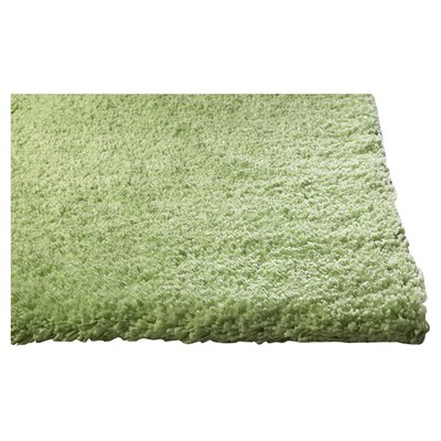 Shaggy Hand-Woven Spearmint Green Area Rug Rug Size: Rectangle 23 x 39