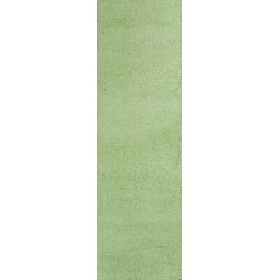 Bouvier Spearmint Green Area Rug Rug Size: Runner 23 x 76