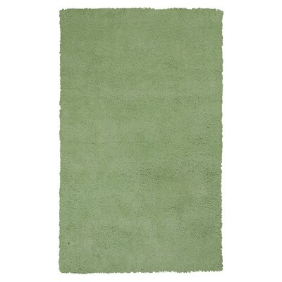 Bouvier Spearmint Green Area Rug Rug Size: 9 x 13