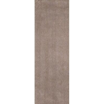 Bouvier Beige Area Rug Rug Size: Runner 2'3
