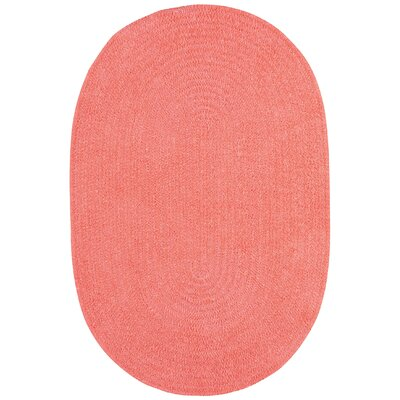 Yonkers Braided Bubblegum Area Rug Rug Size: Oval 4 x 6