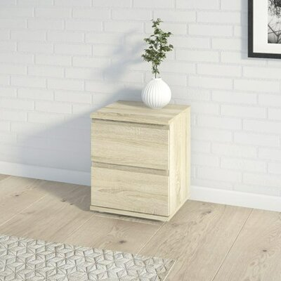 Aaron 2 Drawer Nightstand Finish: Oak Structure