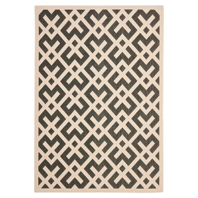 Jefferson Place Black & Beige Indoor/Outdoor Area Rug Rug Size: 53 x 77