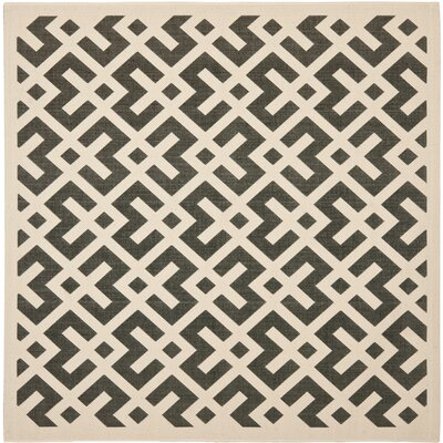 Jefferson Place Black & Beige Indoor/Outdoor Area Rug Rug Size: Square 710