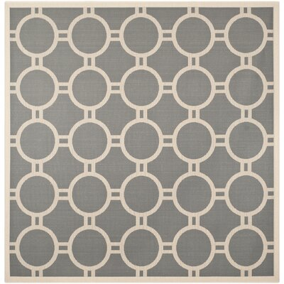 Jefferson Place Anthracite/Beige Outdoor Area Rug Rug Size: Square 710