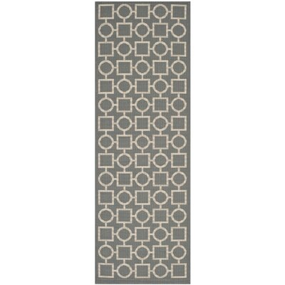 Jefferson Place Anthracite & Beige Outdoor Area Rug Rug Size: Runner 23 x 67
