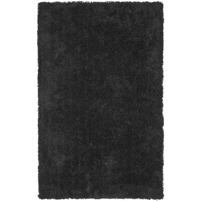 Starr Hill Solid Black Area Rug Rug Size: Rectangle 4 x 6