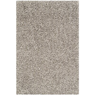 Holliday Silver Area Rug Rug Size: 2 x 3