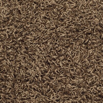 Holliday Light Brown Area Rug Rug Size: 2 x 3