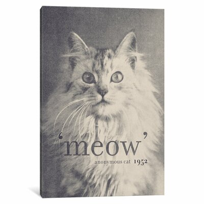 Famous Quotes (Cat) Graphic Art on Wrapped Canvas Size: 12