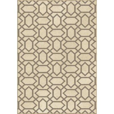 Bolds Gray/Beige Area Rug
