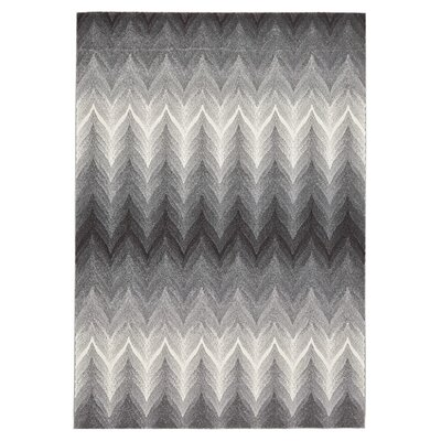 Calaway Rug in Ash Size: 5 x 8