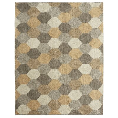 Callas Board Gray Area Rug Rug Size: 35 x 52