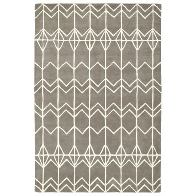 Ronnie Hand-Tufted Gray Area Rug Rug Size: 36 x 53
