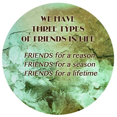 'Types of Friends' Graphic Art on Metal
