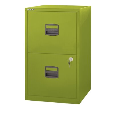 Castaneda 2-Drawer Vertical File Finish: Green