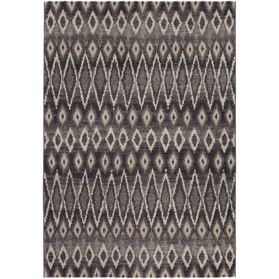 Sappington Gray Area Rug Rug Size: Runner 27 x 710