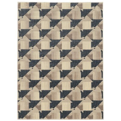Chapa Gray Area Rug Rug Size: Rectangle 53 x 73