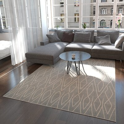 Doretha Gray Area Rug Rug Size: Rectangle 9 x 12