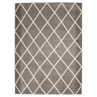 Kester Moroccan Trellis Gray/Ivory Area Rug Rug Size: 710 x 910