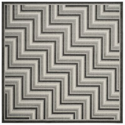 Schaefer Gray Outdoor Area Rug Rug Size: Square 67