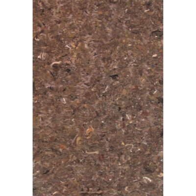 Chacko Brown Indoor/Outdoor Area Rug Rug Size: 410 x 76