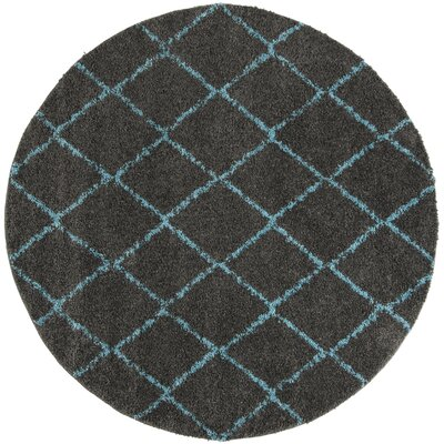 Amicus Gray/Turquoise Area Rug Rug Size: Round 67