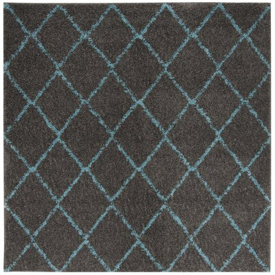 Amicus Gray/Turquoise Area Rug Rug Size: Square 67