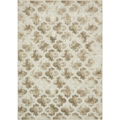 Sarmiento Cream Indoor/Outdoor Area Rug Rug Size: Rectangle 9 x 12
