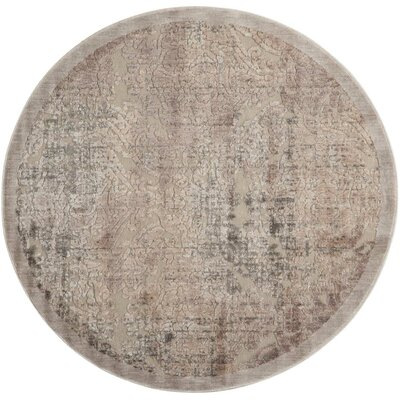 Simms Gray Area Rug Rug Size: Round 53