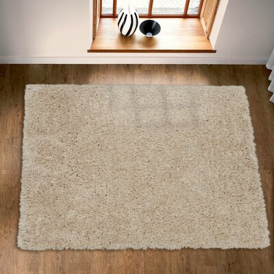 Costantino Fuzzy High Pile Beige Area Rug Rug Size: Rectangle 2 x 5
