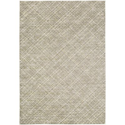 Mcmann Light Gray Area Rug Rug Size: 52 x 76