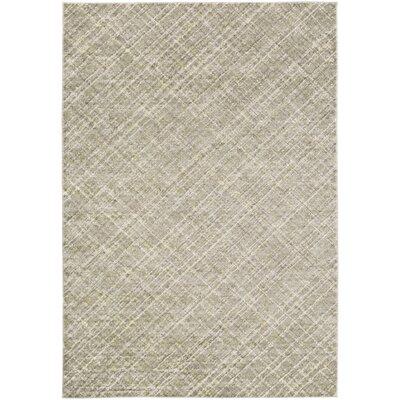 Mcmann Light Gray Area Rug Rug Size: Rectangle 52 x 76