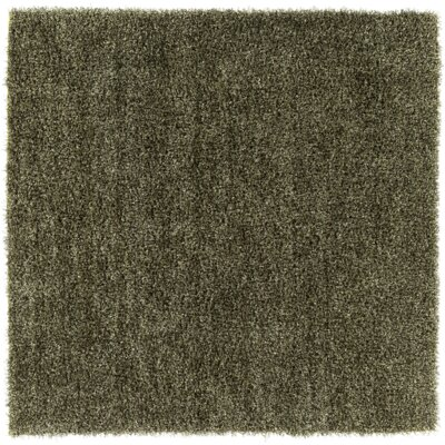 Mchaney Hand-Tufted Green Area Rug Rug Size: Square 8