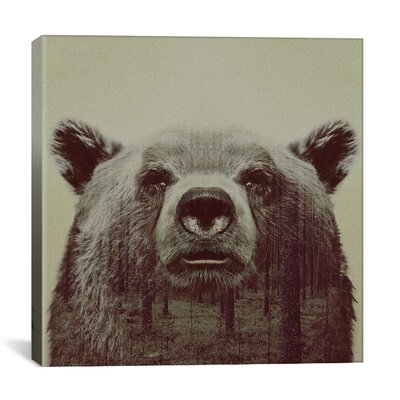Bear Canvas Art