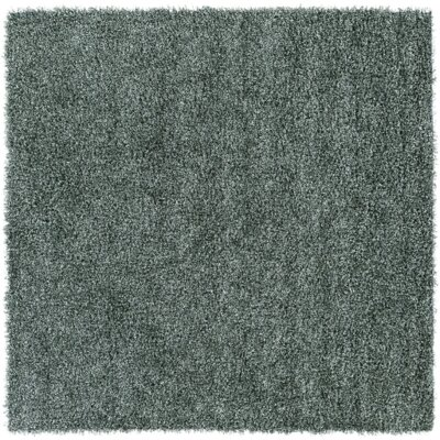 Mchaney Sea Green Area Rug Rug Size: Square 6